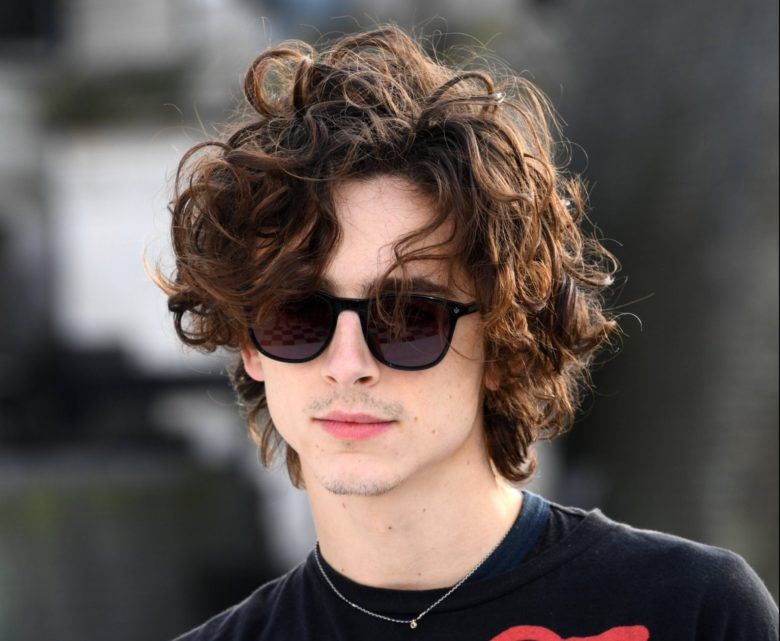 Timothée Chalamet messy hair
