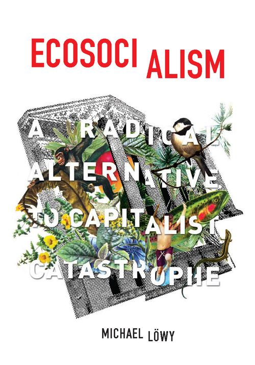 Michael Lowy's Ecosocialism: A Radical Alternative to Capitalist Catastrophe